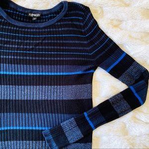Express Metallic Stripe Ribbed Sweater Black Blue
